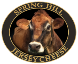 Spring Hill Jersey Cheese Family Brands
